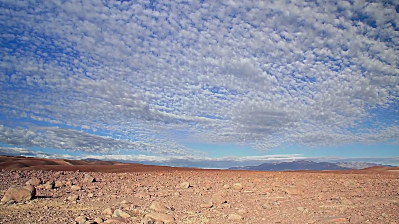 Vida humana en el desierto